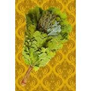 Дубовые сборные веники с целебными растениями фото