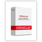 Сервер баз данных Oracle Database 10g Enterprise Edition фото