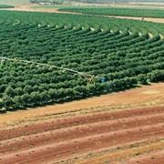 Оборудование сельскохозяйственное оросительное фото