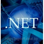 .NET (базовый курс) фото