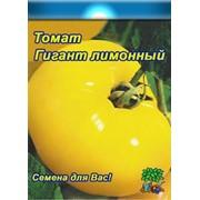 Томат Гигант Лимонный (0.1г) фото