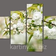 Модульная картина Белые цветы (код 406 ) фото