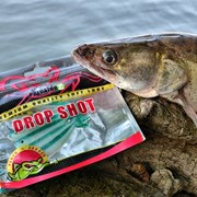 Predator-Z Drop Shot soft lure, 10cm, 4шт/уп, 1,9g (CZ2463) фото