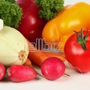 Свежая овощная продукция в ассортименте фото
