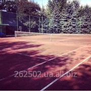Теннисные корты на Трухановом острове фото