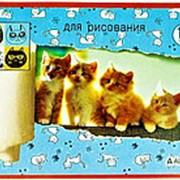"""Альбом 112999 Алингар AL 6713 """"Котята"""" для рисования ( 12 л./ А4 ) на скрепке ( цена за 1 шт.) фото"""
