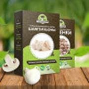 Набор для выращивания грибов Грибной Сезон в ассортименте фото