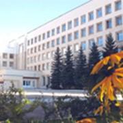 Академия Министерства внутренних дел Республики Беларусь фото
