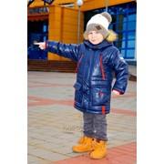 Куртка демисезонная для мальчика модель 4211И фото