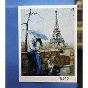 Картина по номерам 40х50 арт E513 фото
