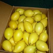 Лимоны фото