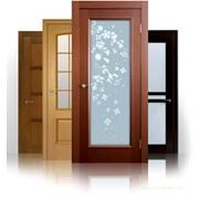 Дверное полотно со стеклом (200*800) фото