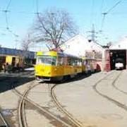 Функционирование трамвайно-троллейбусного транспорта фото
