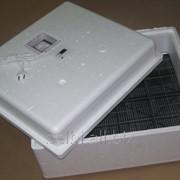 Инкубатор для яиц фото