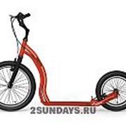 Прогулочный алюминиевый самокат Yedoo Rodstr красный фото