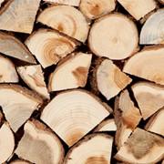 Доставка дров в Астане фото
