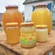 Натуральный живой мёд 40 тонн фото