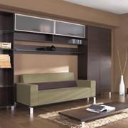 Мебель корпусная.Корпусная мебель фото