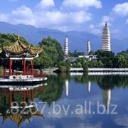 Виза в Китай туристическая однократная фото