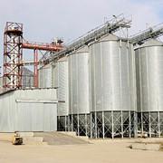 Транспортировка, хранение и подработка зерна и семян фото
