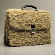 Маркетинговые исследования аграрного рынка фото