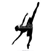 Показ спектаклей оперы и балета фото