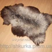 Овечья шкура - овечьи шкуры - шкура овцы (ворс средней длины) 16 фото