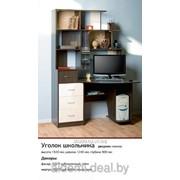 """Стол компьютерный """"Уголок школьника"""" фото"""