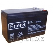 Батарея аккумуляторная EnerS серия FM-D(GFM-D) фото