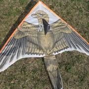 Воздушный змей Орел фото