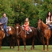 Конные прогулки, обучение верховой езде. фото