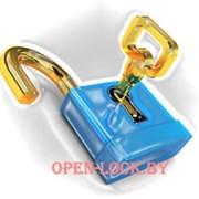 Вскрытие замков и дверей OPEN-LOCK фото