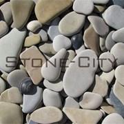 Морская и речная декоративная галька   фото