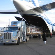 Авиаперевозки грузов по России фото
