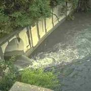 Очистка сточных вод методом биофильтрации фото