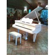 Настройка, ремонт, реставрация роялей, пианино фото