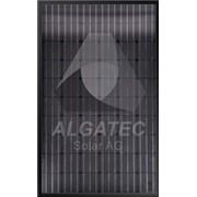 Панель солнечная ALGATEC BlackLine mono фото