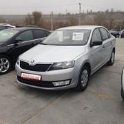 Skoda Rapid - Piaţă de maşini noi şi cu parcurs în Chişinau - Pro Auto фото
