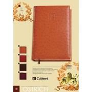 Ежедневник а5 ostrich tm cabinet фото