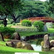 Устройство прудов, ручьев и водопадов в саду фото