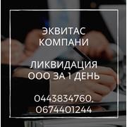 Експрес-ліквідація ТОВ у Києві. Процедура ліквідац фото