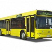 Автобусы городские МАЗ 107 фото