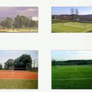 Спортивное строительство фото