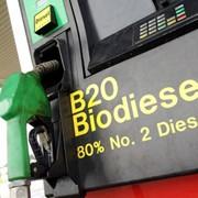 Биодизель фото