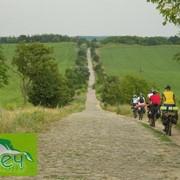 Корпоративный туризм, корпоративный активный отдых. Прогулки на велосипеде. Велотуры. Велопрогулки. Вдвоем на велосипеде. фото