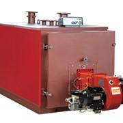 Оборудование для модернизации водогрейных котлов серии КОЛВИ, ВК, РИО, НИКА позволяющие экономить электроэнергию-50%,газ-15% фото