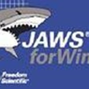 Freedom Scientific Обновление Jaws 11.0 на 14.0 + SMA арт. 4017 фото