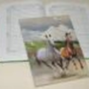 Дневники для школы фото