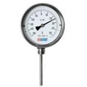 Термометры: Лабораторные, Технические, Нефтяные, Специальные, Сельскохозяйственные, Электроконтактные, Метереологические фото