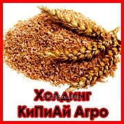 Кормовая добавка (в т. ч. отруби пшеничные) фото